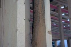 Отсутствие углового соединения, сырые доски, поражение обзолом - способствуют усадке.