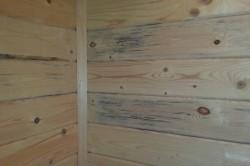 Выбор древесины при строительстве дома из каркаса